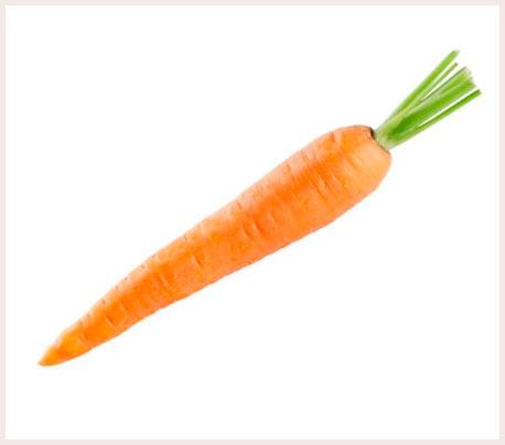 Znalezione obrazy dla zapytania marchew
